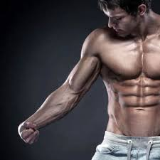 「前腕筋群」を構成する筋肉