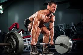 前腕を鍛えるメリット・効果②「前腕強化は他の部位のトレーニング効果を高める」
