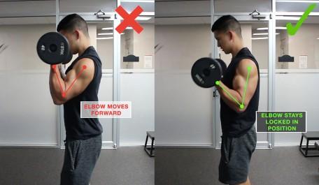 """腕橈骨筋の筋トレ効果を高めるコツ③「アームカール系種目では""""肘""""の位置を固定して行う」"""