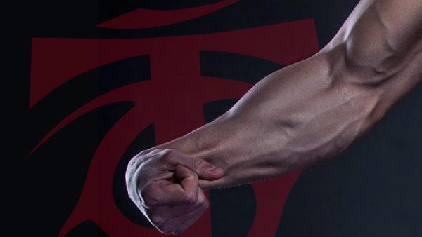 前腕を太くしたいのであれば「腕橈骨筋」を鍛えるのがおすすめ!