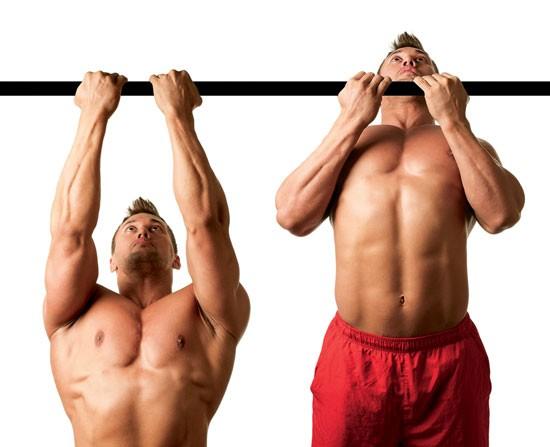 腕橈骨筋を鍛える効果的な種目「リバース・チンニング(逆手懸垂)」