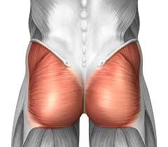 「ランジ」で鍛えられる部位・筋肉について