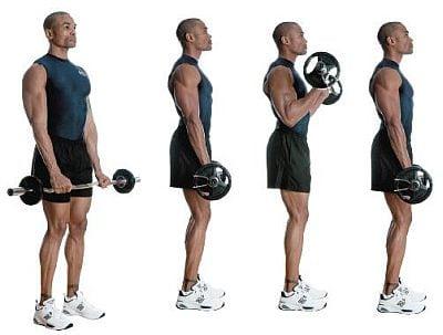 腕橈骨筋の筋トレ効果を高めるコツ②「動作はゆっくりと行う」