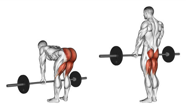 デッドリフトの筋トレ効果を高めるコツ③「腕の力は極力抜いた状態で行う」