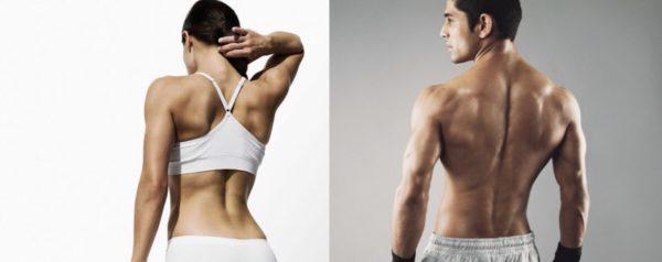 背筋を鍛えるメリットと効果③「引き締まった美しい曲線の背中に」